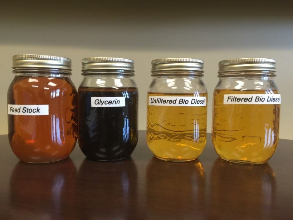 Four jars holding received grease, separated glycerin, unfiltered bio-diesel, and filtered bio-diesel