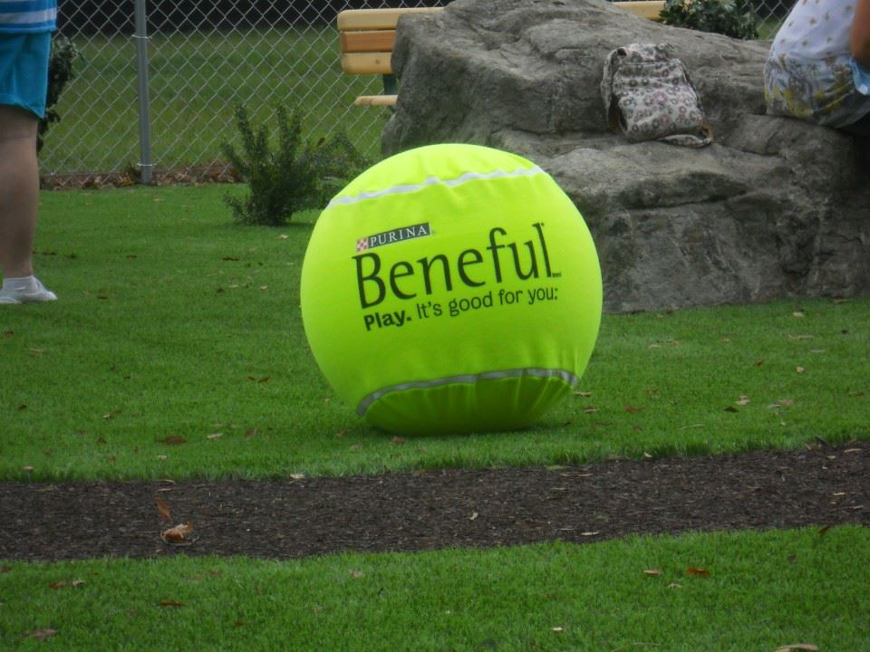 Beneful Dream Dog Park at Veterans Park 05